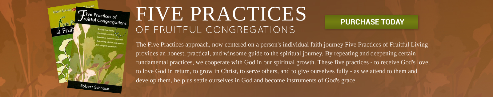 Five Practices of Fruitful Congregations - NC Conference